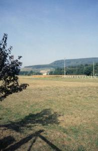 Эльзасский пейзаж, прототип пейзажа на боковой створке Изенгеймского алтаря