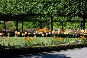 Сады Burggarten в Нюрнберге, Германия