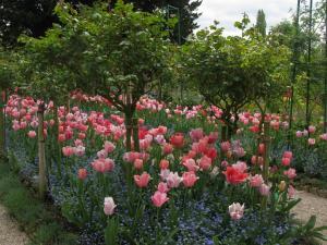 Сад Клода Моне в Живерни, Франция